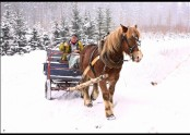 pro koníka s dřevorubcem ochotně se nadchnem!