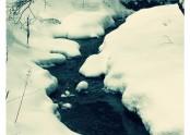 Potůček ve sněhu průhledně zurčí,
