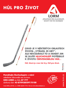 hokejka_210x280